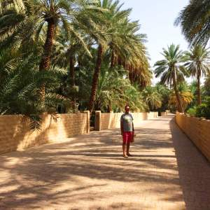 Reasons to Visit Al Ain | The Oasis