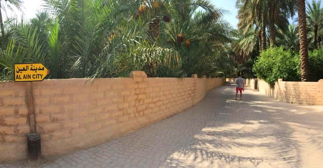 Reasons to Visit Al Ain | Al Ain Oasis